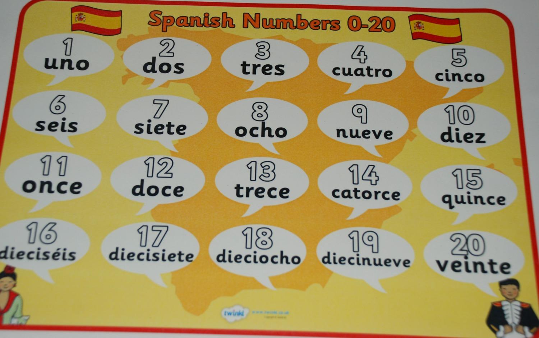 Beginner Spanish Folder   ofamily learning together