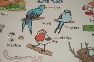 Afrikaans bird mat