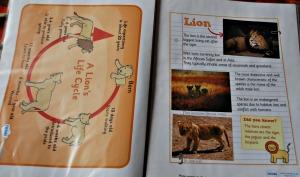animal factfile 2