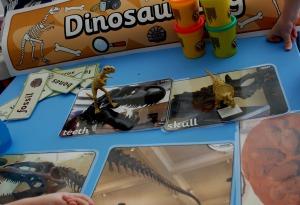 Dinosaur skeleton photos