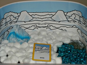 Arctic habitat tray
