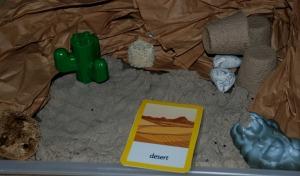 desert habitat tray