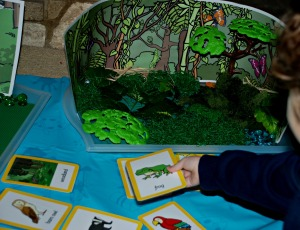 Habitat tray adding animal cards