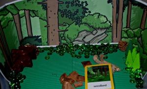 woodland habitat tray