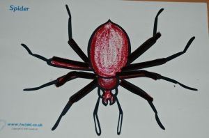 animal colouring page from Twinkl the spider added some pipe cleaners for the legs