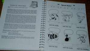 Jollu Grammer handbook what it looks like inside