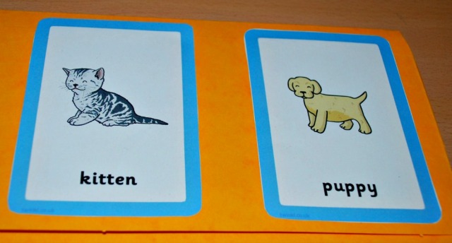 Animals and their Young matching cards used a really easy to make folder. Great for younger children