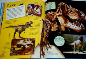 Jake's Bones the T-Rex page
