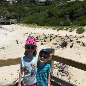 kids with penguins