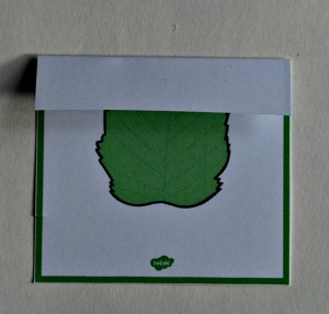Leaf identification card