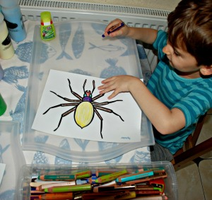 Sand Art Minibeast - spider page using free to download colouring pages from Twinkl