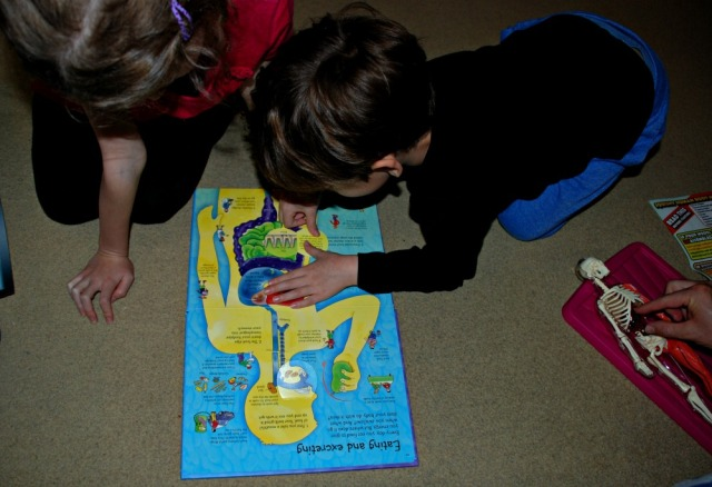 Young kids fascinated by the Usborne See Inside your body book