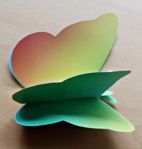 3D rainbow butterfly