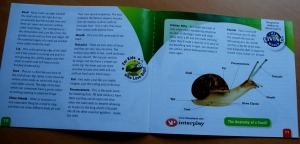 Snail World - the booklet that comes with the set