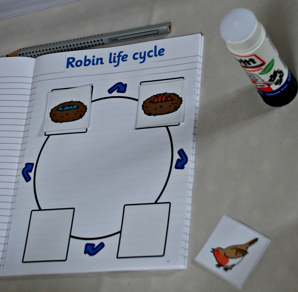 Make Your Own Animal Life Cycle Book | ofamily learning together