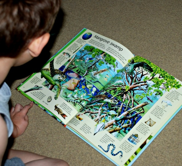 Youngest reading the Usborne great planet earth search book