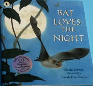 bat-loves-the-night-a-nature-storybook-which-teaches-kids-about-bats