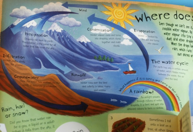 how-the-weather-works-the-water-cycle