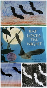 nature-storybook-bat-loves-the-night-is-wa-great-resource-for-kids-learning-about-bats