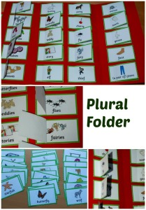 PLural Word folder made using word cards from the Twinkl website
