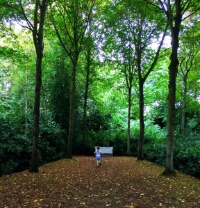 running-under-the-trees-at-a-national-trust-site