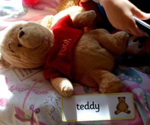 label-the-house-cards-teddy