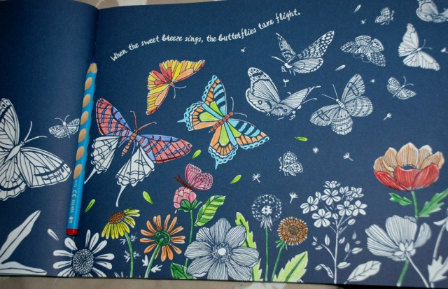 Colour Together Nature Book Butterfly page partly coloured in