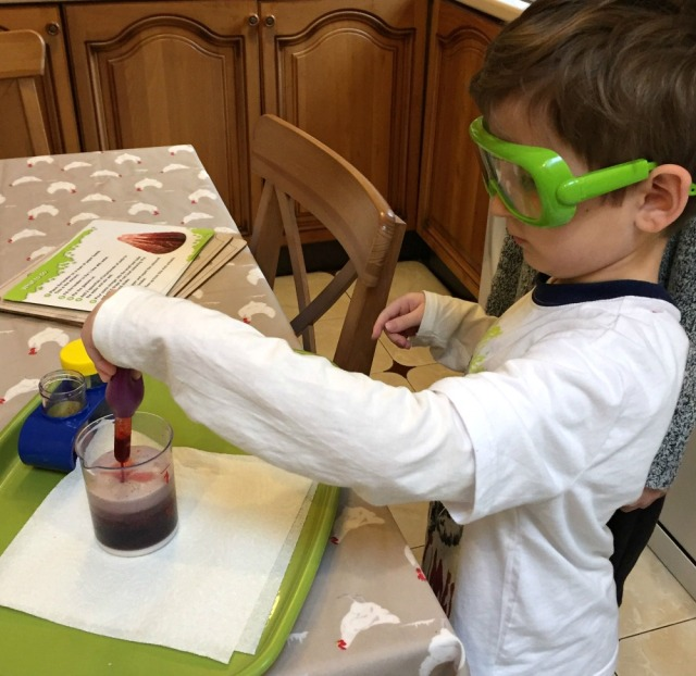 learning-resources-science-kit-busy-following-one-of-the-experiments