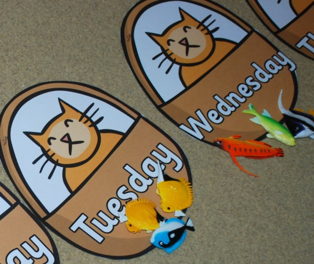 Hamish the cat with different fish as part of working out story sums