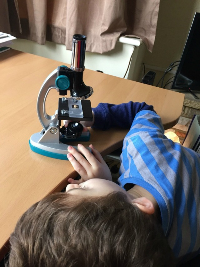 MicroPro miscroscope being examined by a 6 year old