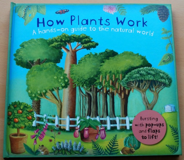 How Plants Work, a stunning children's book which deals with plants, how they grow and what we use them for
