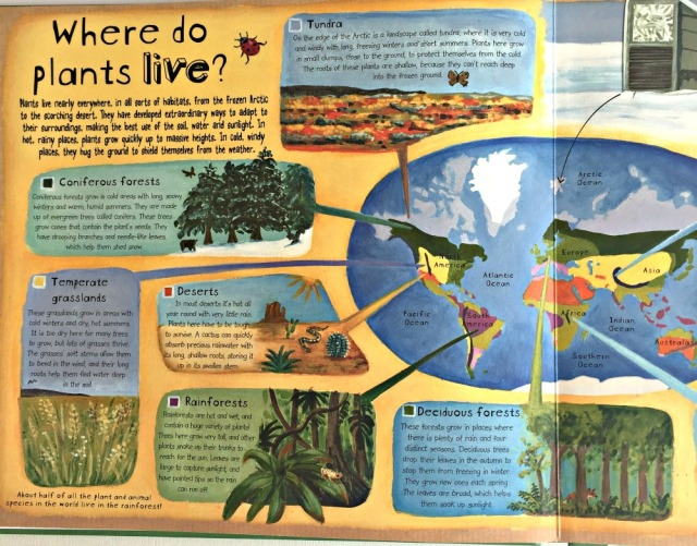 How Plant Work, a children's plant book by Templar which includes a section on Where do Plants Live