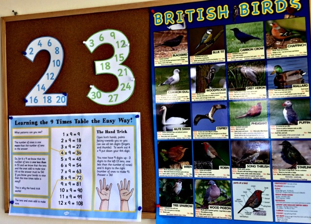 One of the kids learning boards that has a British Bird Poster and some maths goodies on it