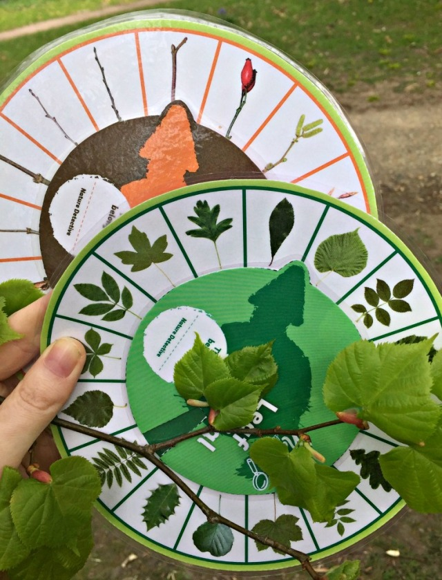 Leaf and Twig iDials free to download from the Woodland Trust website