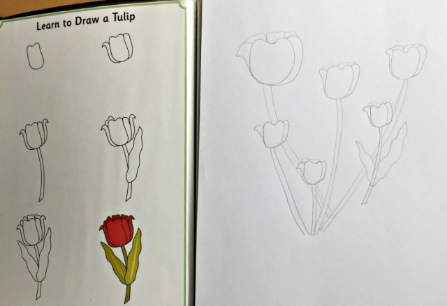 How to Draw Tulips from Activity Village