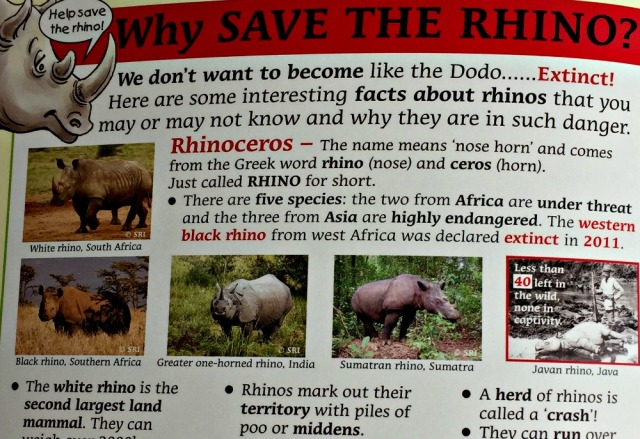 Rescuing Rhino after the fictional story it includes some facts about orphaned animals