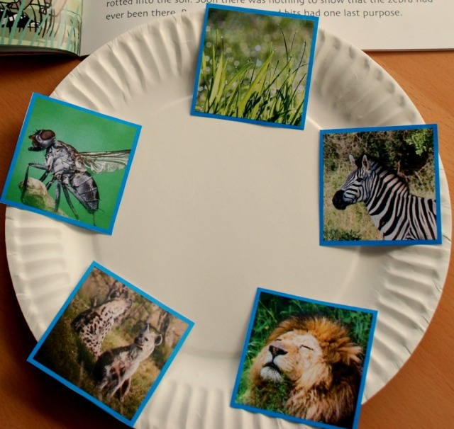 Setting out some food chain pictures to create their own circular food chain using a paper plate as the base. Pictures from Twinkl Resources