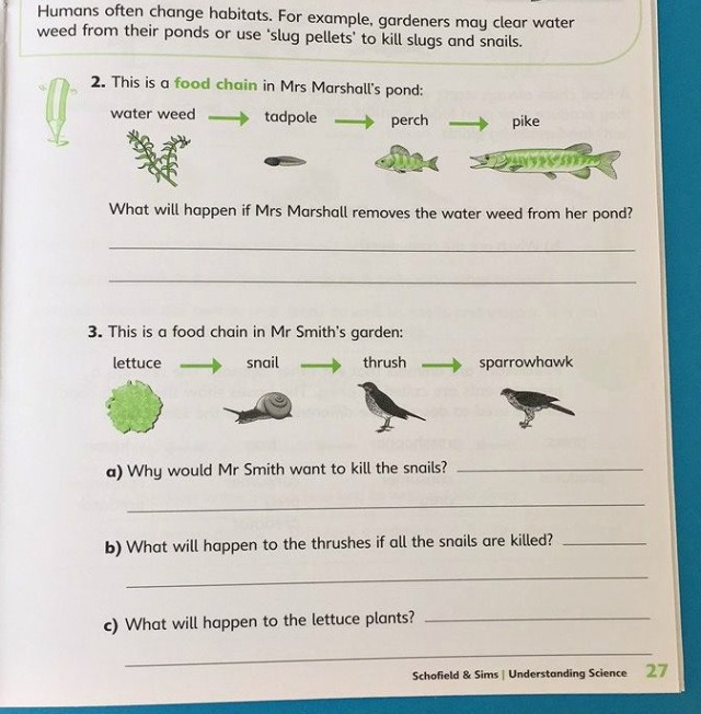 Schofield & Sims Understanding Science the Animal & Plant workbook for key stage 2