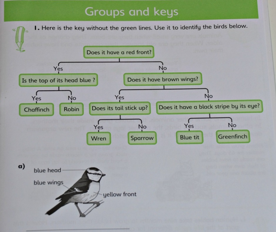 Schofield & Sims Understanding Science range Aniamls and Plants includes grouping different animals together