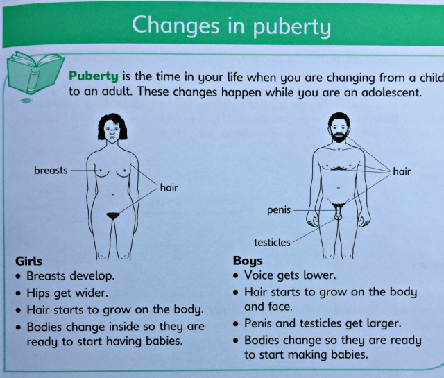 Understanding Science Our Bodies Changes in Puberty