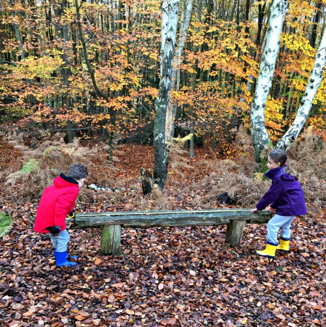 Take the kids on a measuring walk in the woods