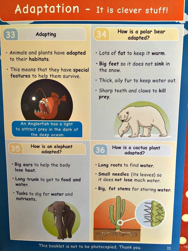 Living Things and Their Habitats Adapation page from inside the Topic Booklet by Oaka Books