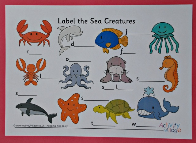 Label the Sea Creature page from Activity Village