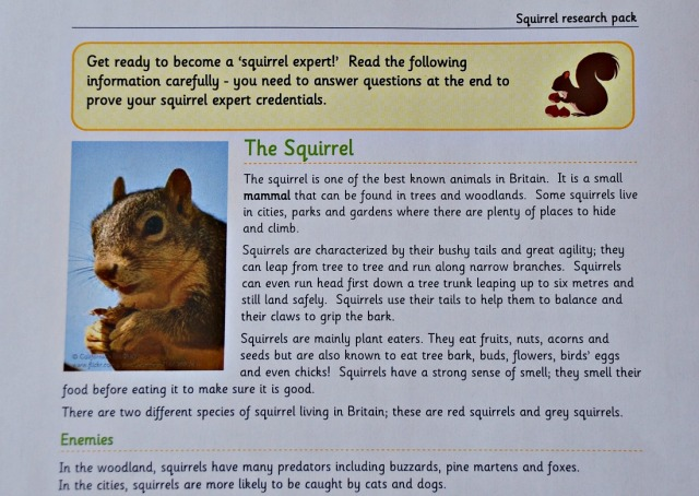 Teachit Primary Website. Free to download Squirrel Research pack