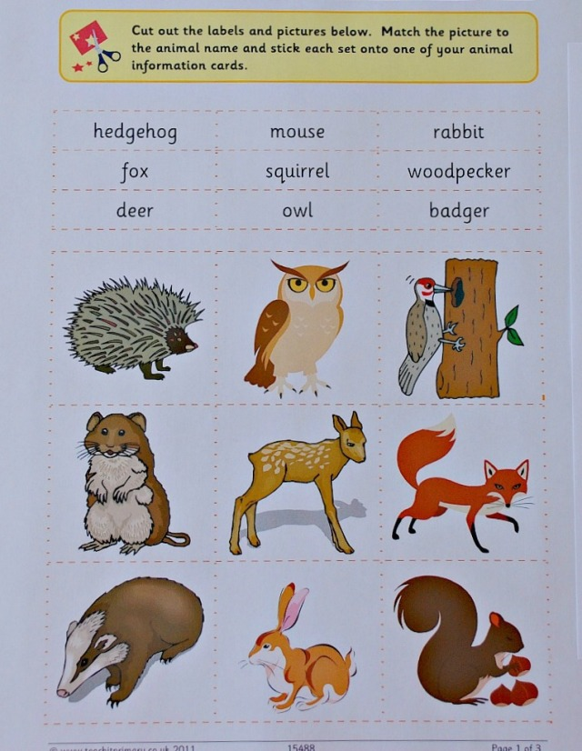 Teachit Primary Website. Free to download Woodland animal cut and label activity
