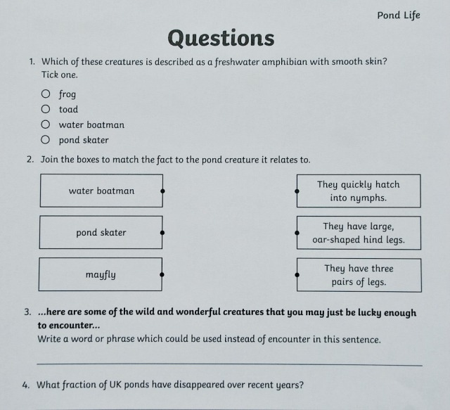 Twinkl's BBC Springwatch Pond Life reading comprehension questions