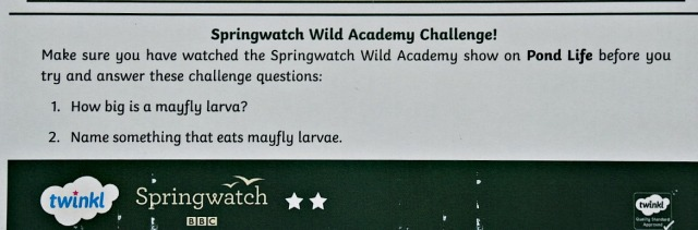 Twinkl and the BBC Springwatch reading comprehensions include a Springwatch Wild Academy Challenge