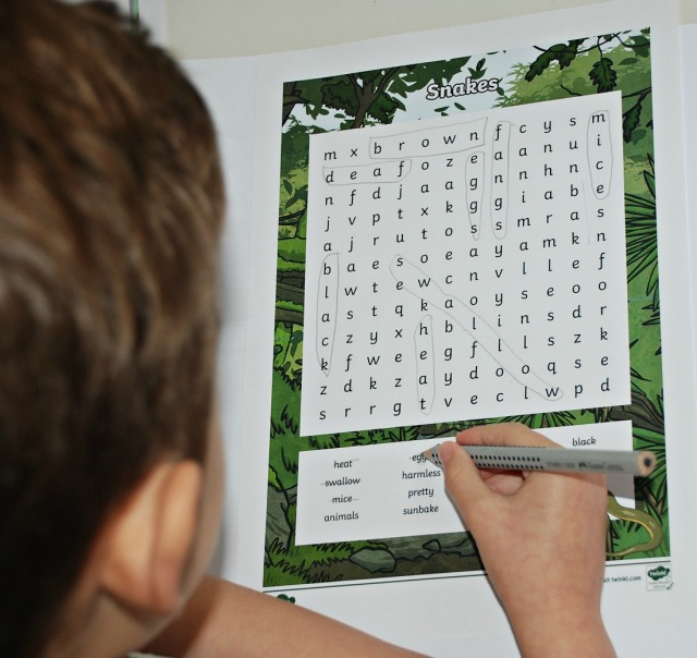Snake wordsearch from Twinkl Resources website