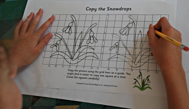 Grid Copy Snowdrops from Activity Village