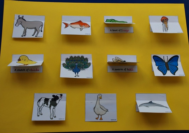 Home-made Collective Noun Poster made using the matching cards from Twinkl Resources